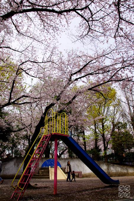 05.公園.jpg
