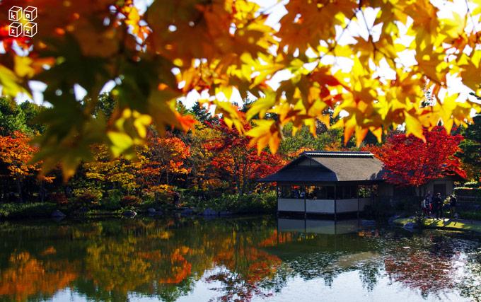 05.日本庭園.jpg